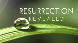 Resurrection (2014)