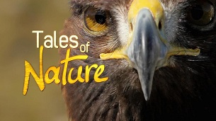 Tales Of Nature (2011)